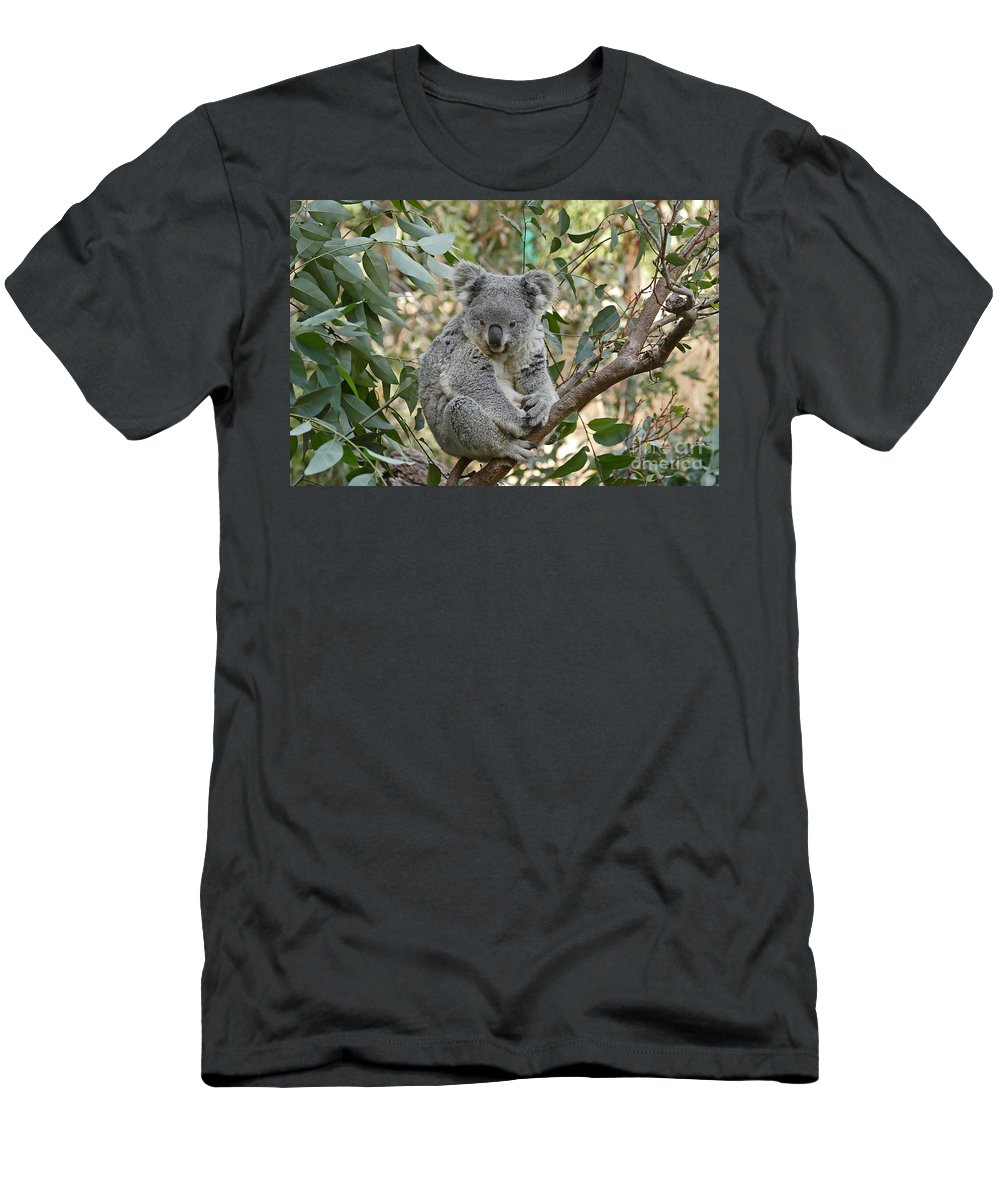 Cute Men's T-Shirt (Athletic Fit) featuring the photograph My Branch by Traci Law