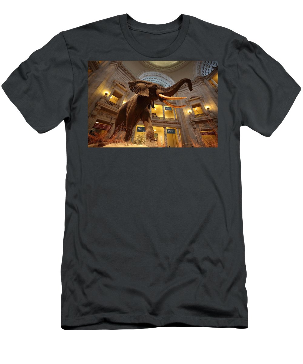 Civil War Men's T-Shirt (Athletic Fit) featuring the photograph National Museum Of Natural History by Scott Fracasso