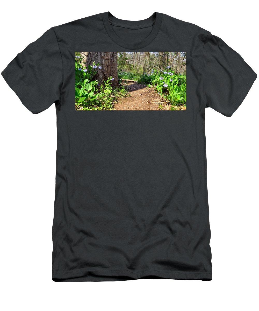 Elder Men's T-Shirt (Athletic Fit) featuring the photograph Nature Path by Art Dingo
