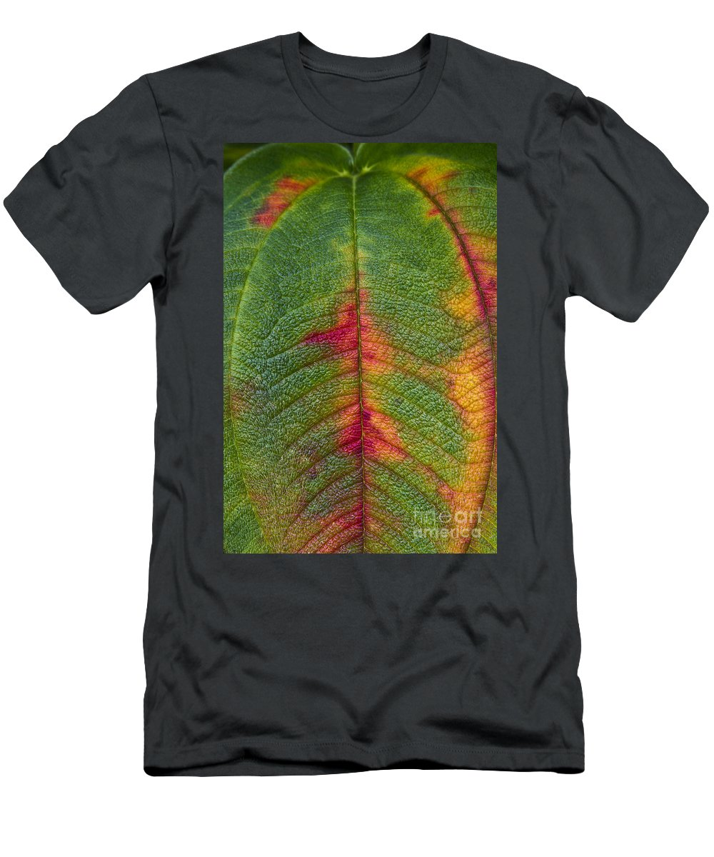 Leaf Men's T-Shirt (Athletic Fit) featuring the photograph Natures Ornaments by Heiko Koehrer-Wagner
