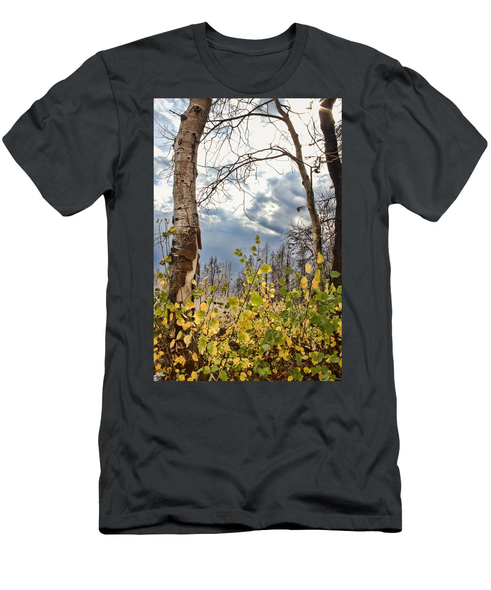 Aspen Men's T-Shirt (Athletic Fit) featuring the photograph New Generation - Casper Mountain - Casper Wyoming by Diane Mintle