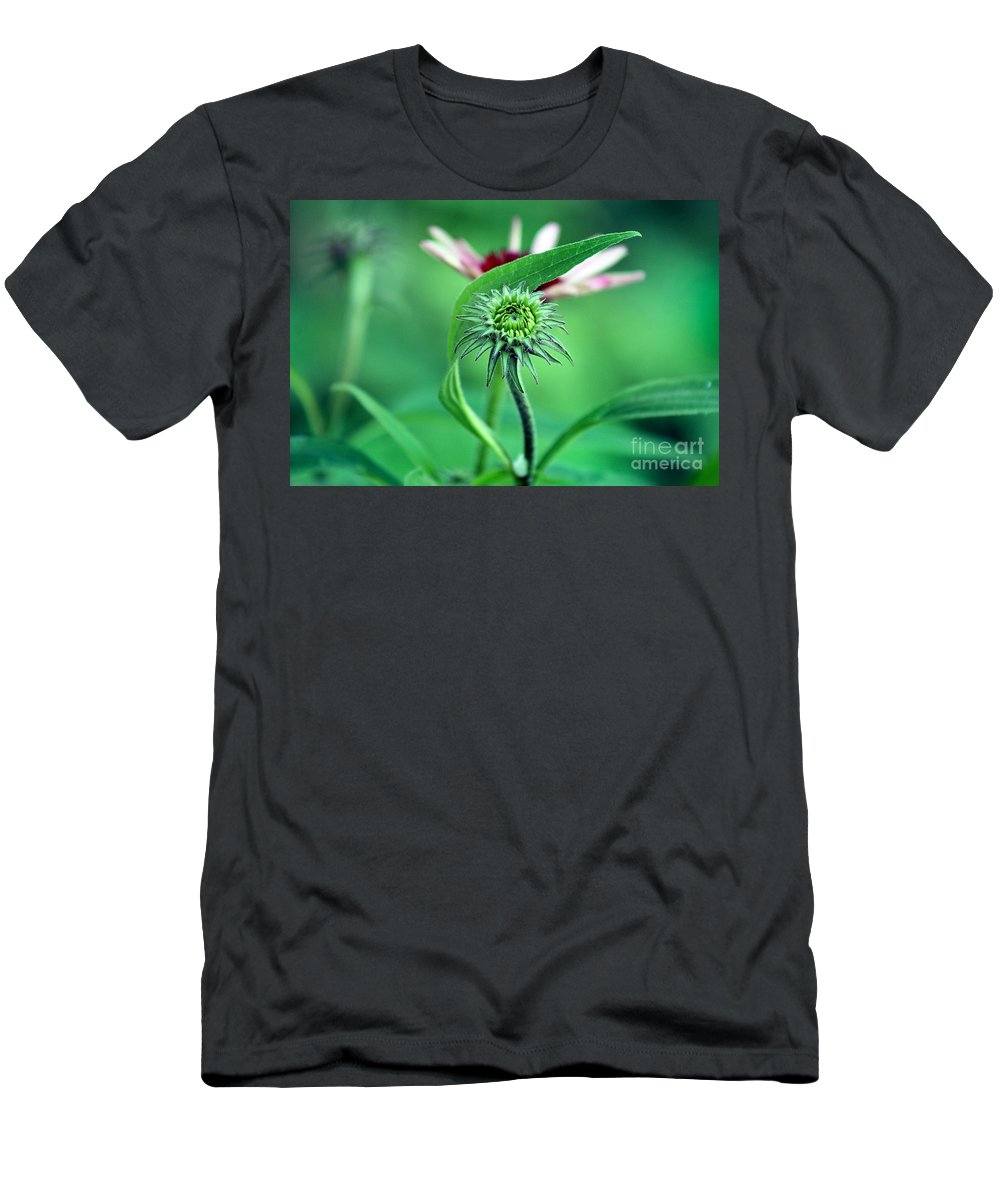 Coneflower Men's T-Shirt (Athletic Fit) featuring the photograph New Life by Karen Adams