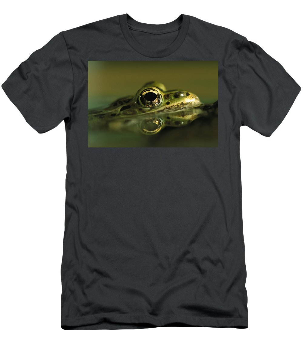 Feb0514 Men's T-Shirt (Athletic Fit) featuring the photograph Northern Leopard Frog by Heidi & Hans-Juergen Koch