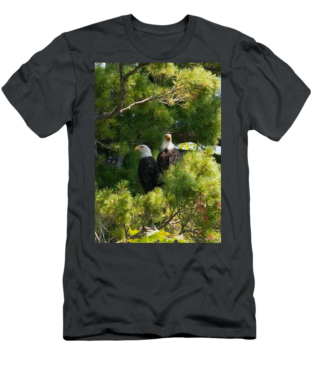 Bald Eagle Men's T-Shirt (Athletic Fit) featuring the photograph Not Listening by Brenda Jacobs