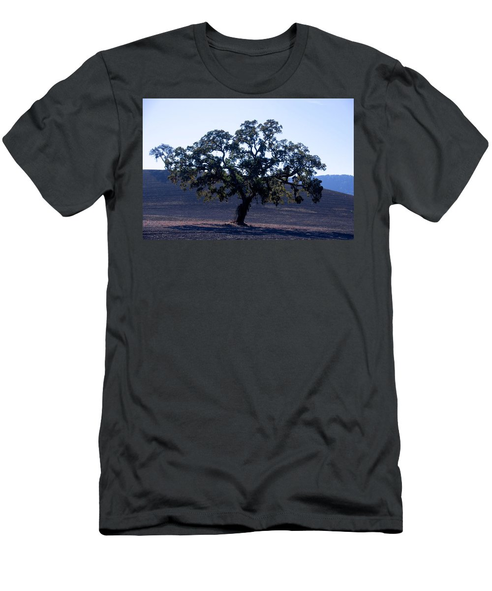 California Oak Tree Men's T-Shirt (Athletic Fit) featuring the photograph Oak In The Sun by Eric Tressler