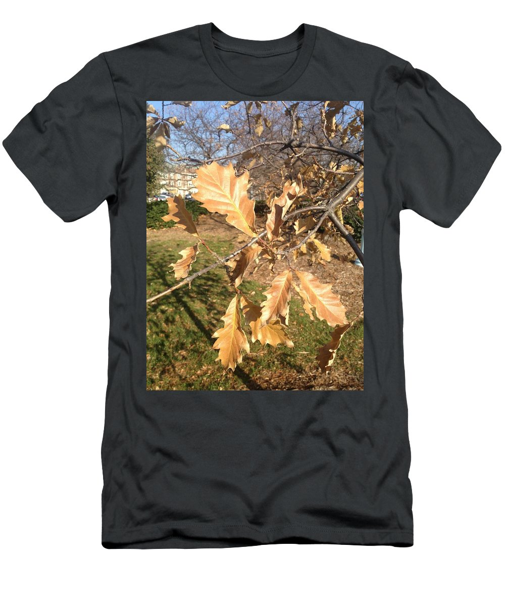 Fall Men's T-Shirt (Athletic Fit) featuring the photograph Oak Leaves by Joseph Yarbrough