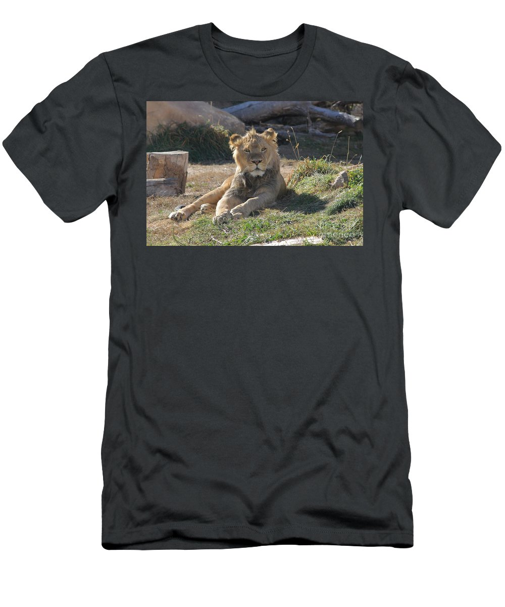 Lion Men's T-Shirt (Athletic Fit) featuring the photograph Oh I Just Can't Wait To Be King by Tonya Hance