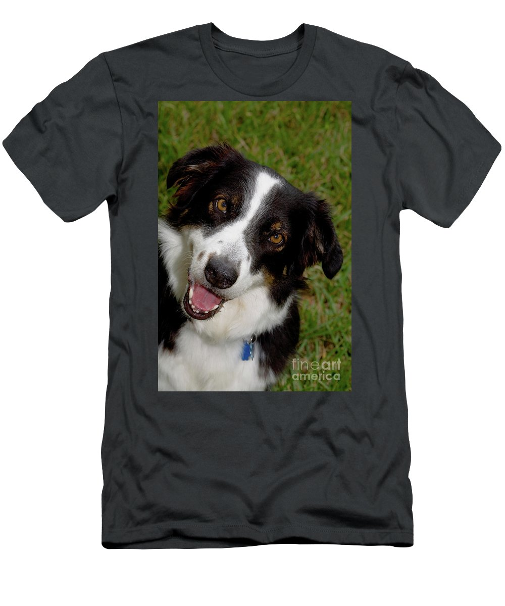 Dog Men's T-Shirt (Athletic Fit) featuring the photograph Old Faithful by Diane Macdonald