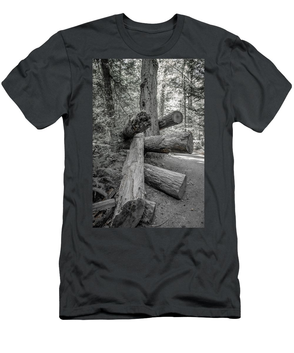 Old Growth Forest Men's T-Shirt (Athletic Fit) featuring the photograph Old Growth Forest Black And White Collection 4 by Roxy Hurtubise