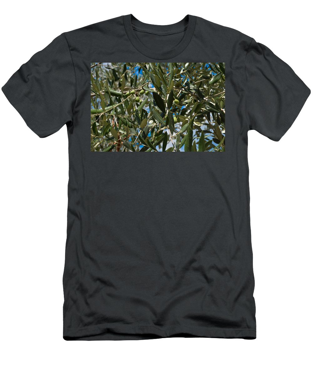 Leaf Men's T-Shirt (Athletic Fit) featuring the photograph Olive Branch by Dany Lison