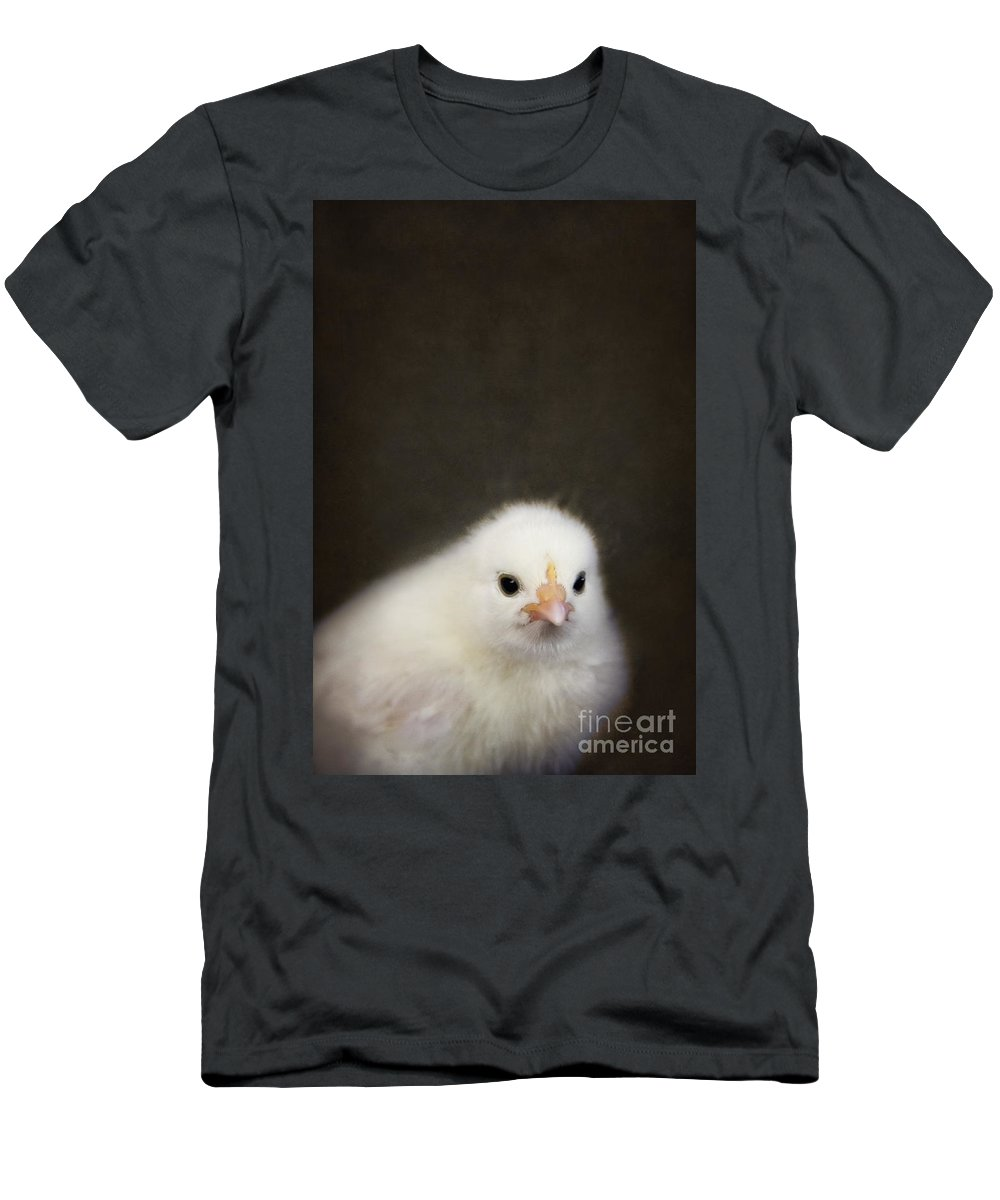Chick Men's T-Shirt (Athletic Fit) featuring the photograph One Chick by Margie Hurwich