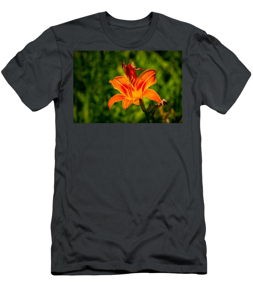 Background Men's T-Shirt (Athletic Fit) featuring the photograph Orange Daylily Flower 3 by Alexander Senin