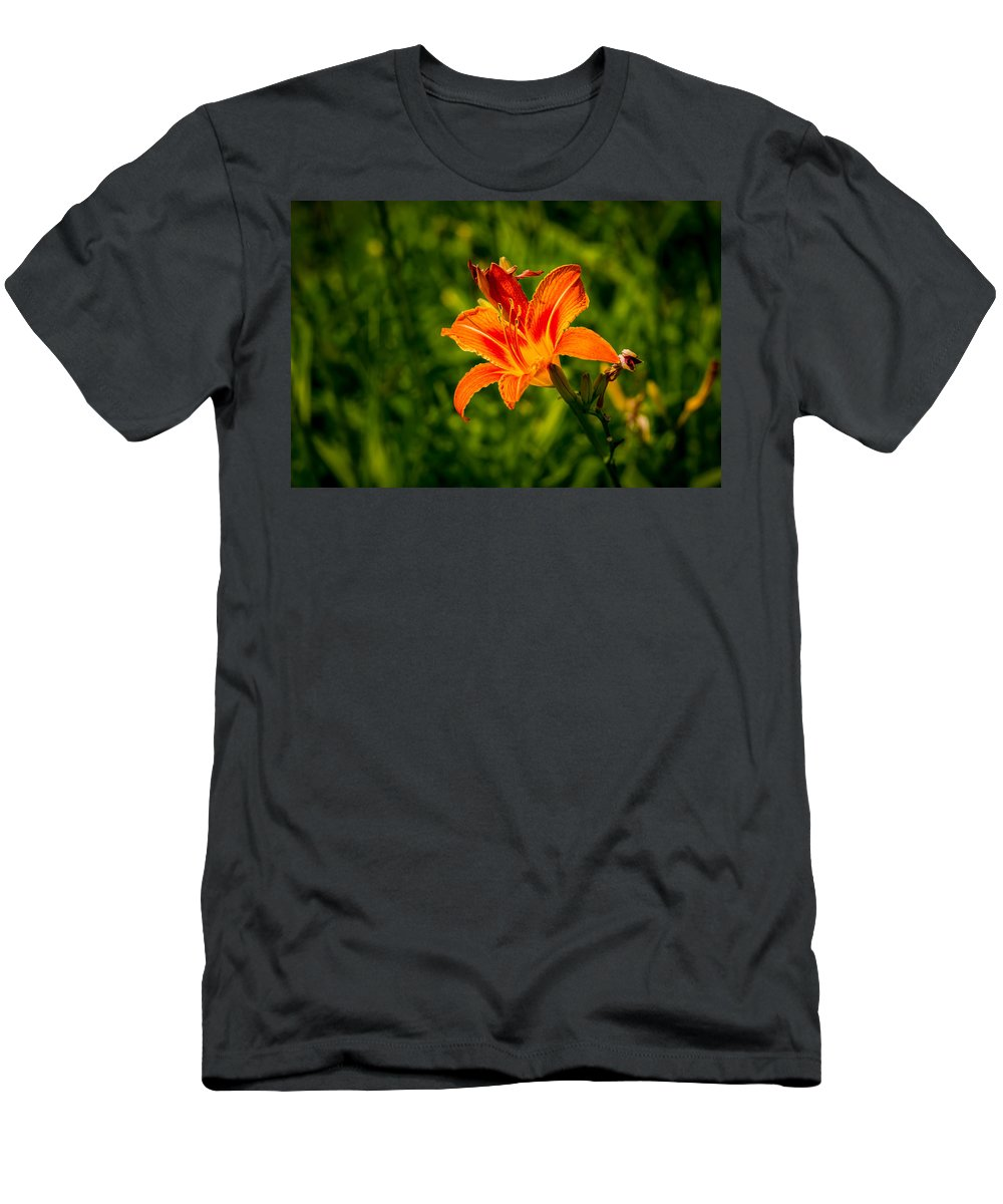 Background Men's T-Shirt (Athletic Fit) featuring the photograph Orange Daylily Flower 4 by Alexander Senin