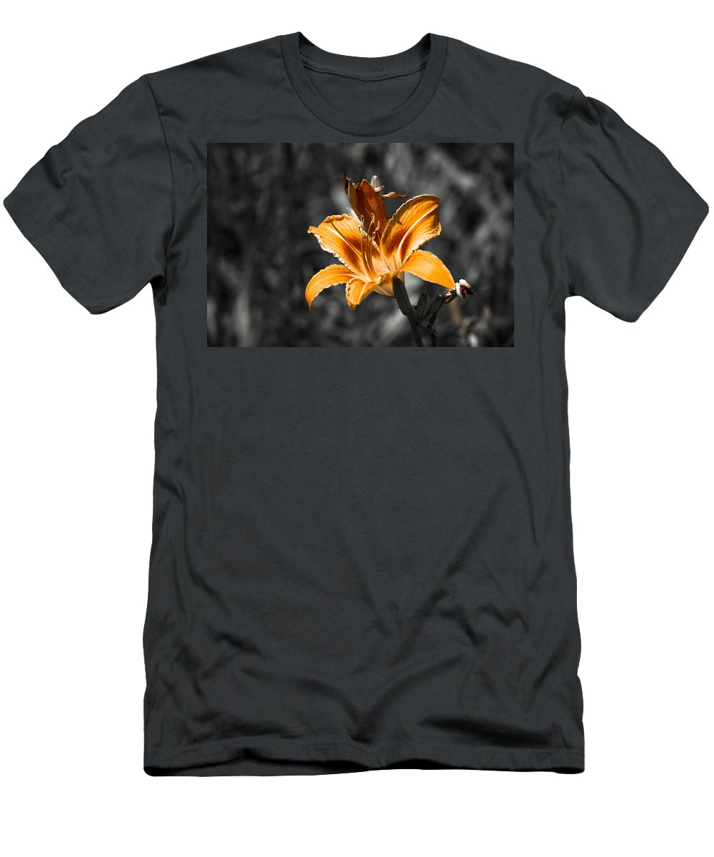 Background Men's T-Shirt (Athletic Fit) featuring the photograph Orange Daylily Flower On Gray 3 by Alexander Senin