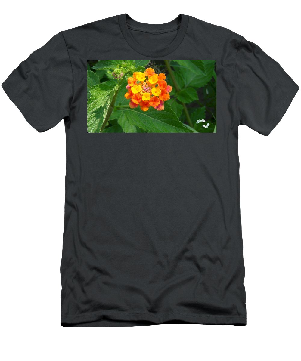 Wildlife Men's T-Shirt (Athletic Fit) featuring the photograph Orange Wildflower by Robert Norcia