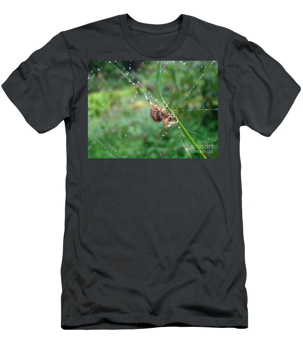 Spider Men's T-Shirt (Athletic Fit) featuring the photograph Orb Weaver Spider - Araneus by Mother Nature