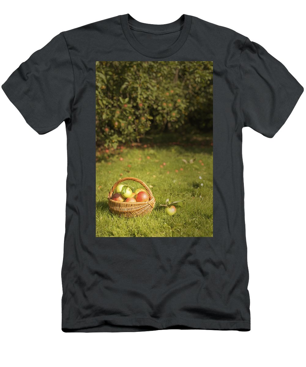 Apples Men's T-Shirt (Athletic Fit) featuring the photograph Orchard by Amanda Elwell