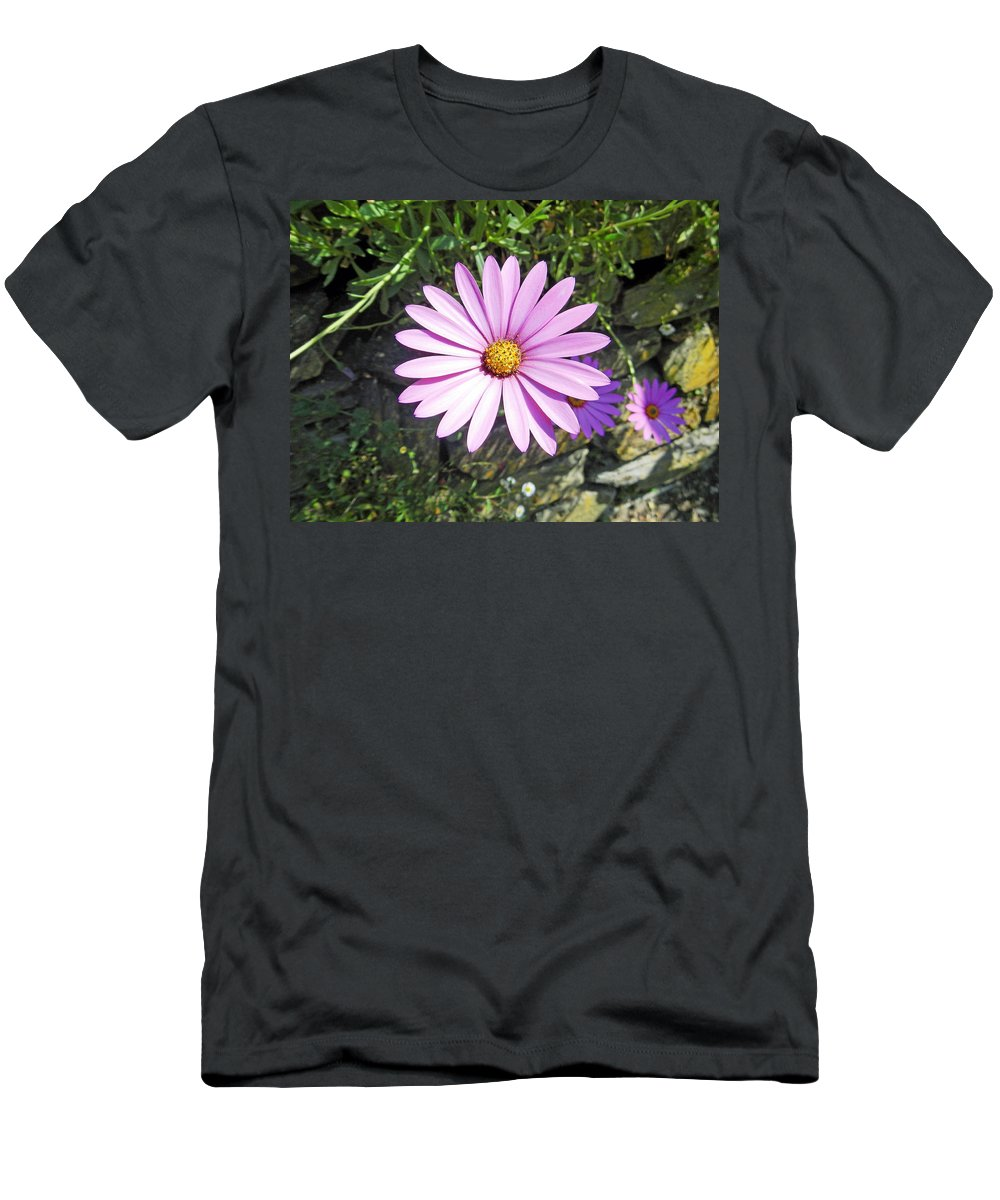 Britain Men's T-Shirt (Athletic Fit) featuring the photograph Osteospermum - African Daisy - Pink by Rod Johnson