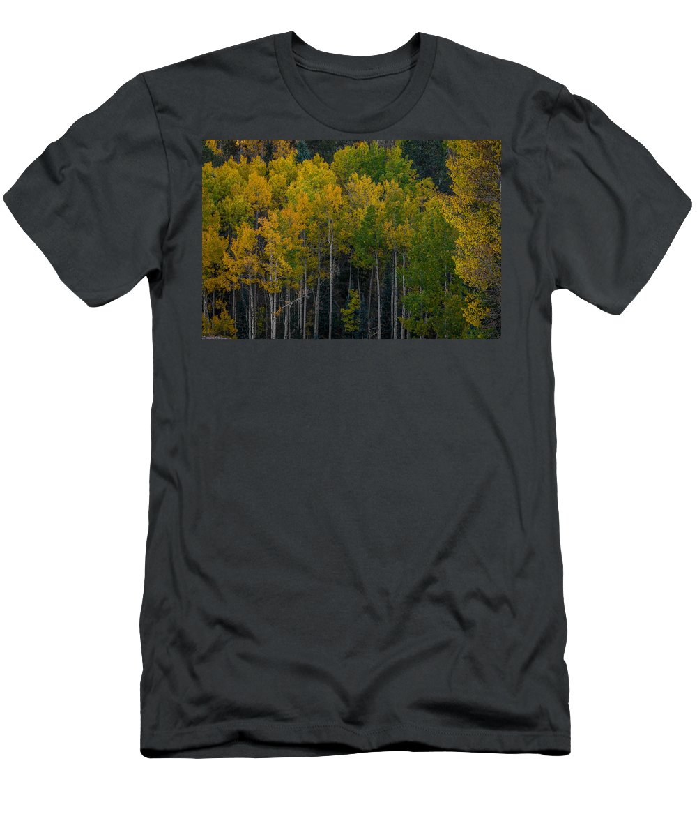 Autumn Men's T-Shirt (Athletic Fit) featuring the photograph Overseers by Ernie Echols