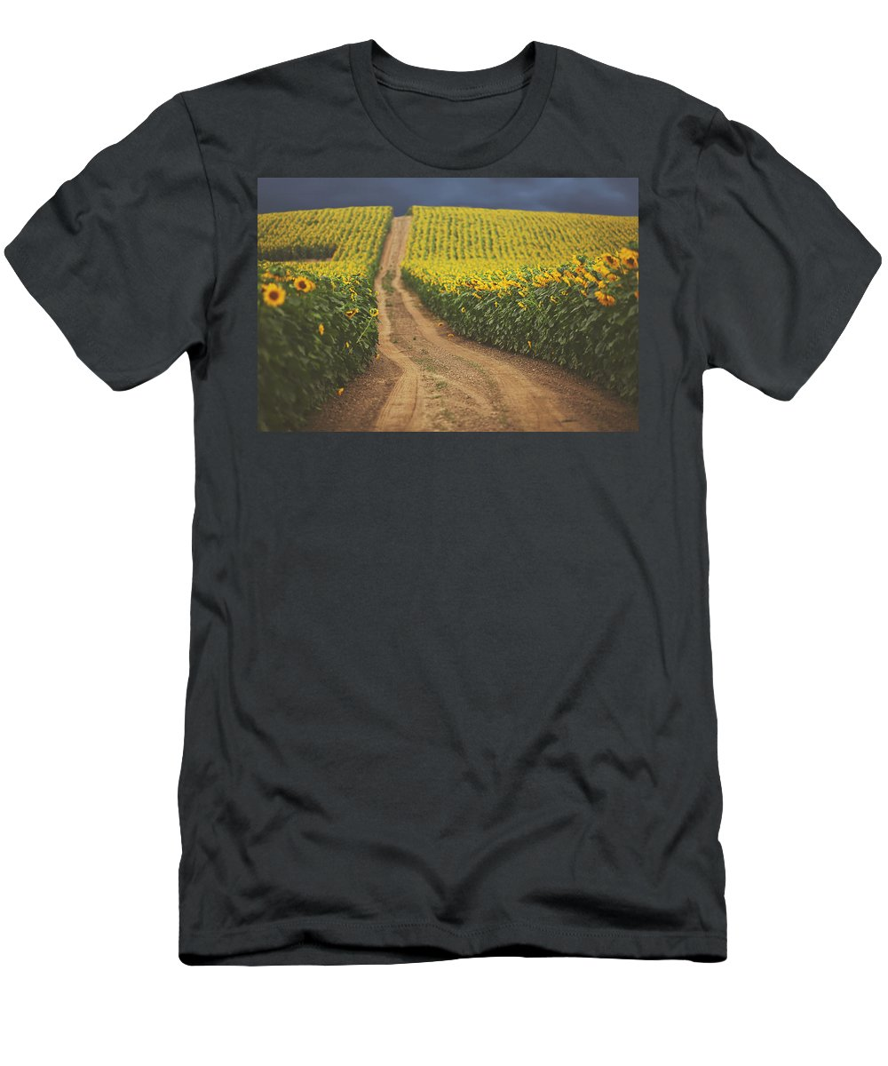 Summer Men's T-Shirt (Athletic Fit) featuring the photograph Oz by Carrie Ann Grippo-Pike