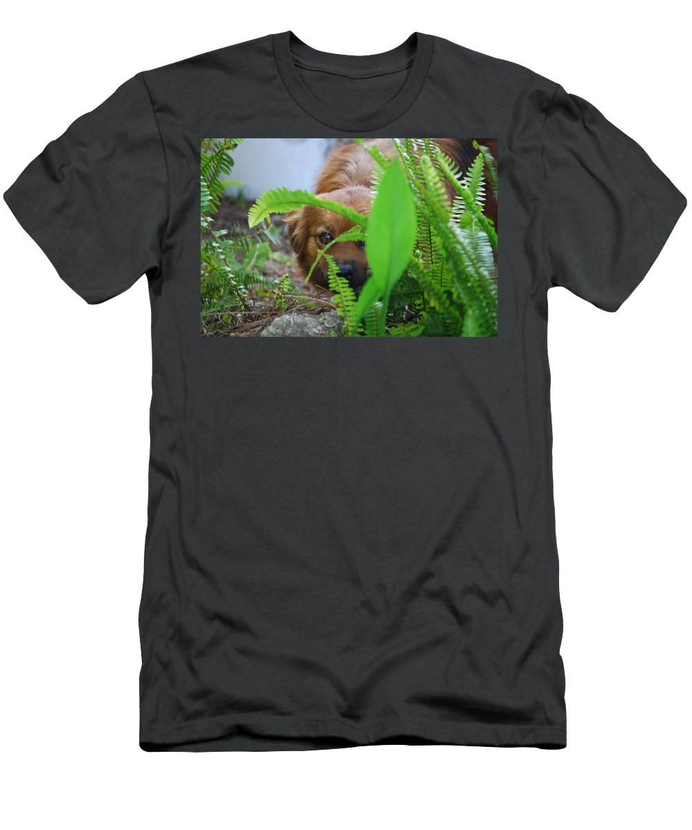 Lady Hiding In The Ferns. Dog Men's T-Shirt (Athletic Fit) featuring the photograph Peek-a-boo by Robert Floyd
