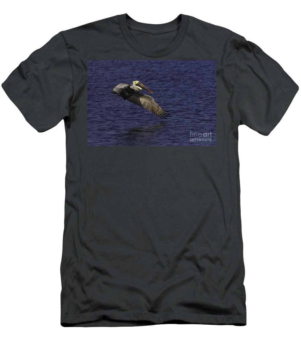 Bird Men's T-Shirt (Athletic Fit) featuring the photograph Pelican Over Water by Maria Struss