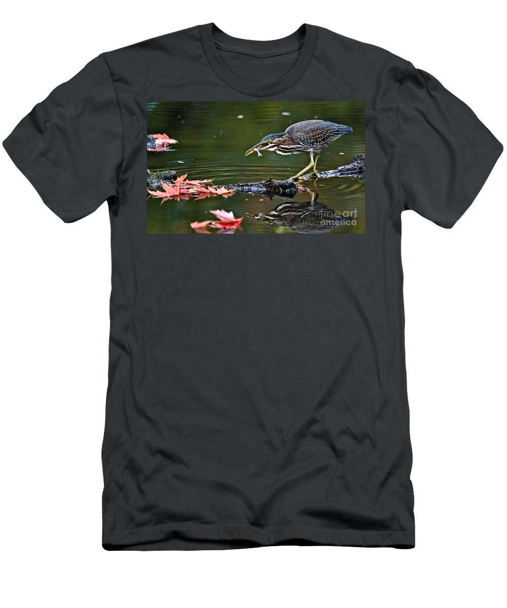 Green Heron Men's T-Shirt (Athletic Fit) featuring the photograph Perfect Catch by Cheryl Baxter