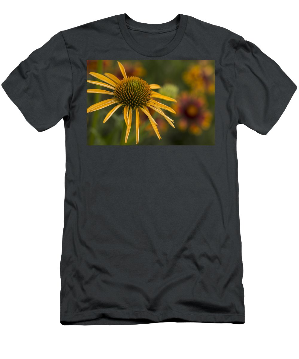 Harry And David Men's T-Shirt (Athletic Fit) featuring the photograph Petals Of Sunshine by Karen Forsyth