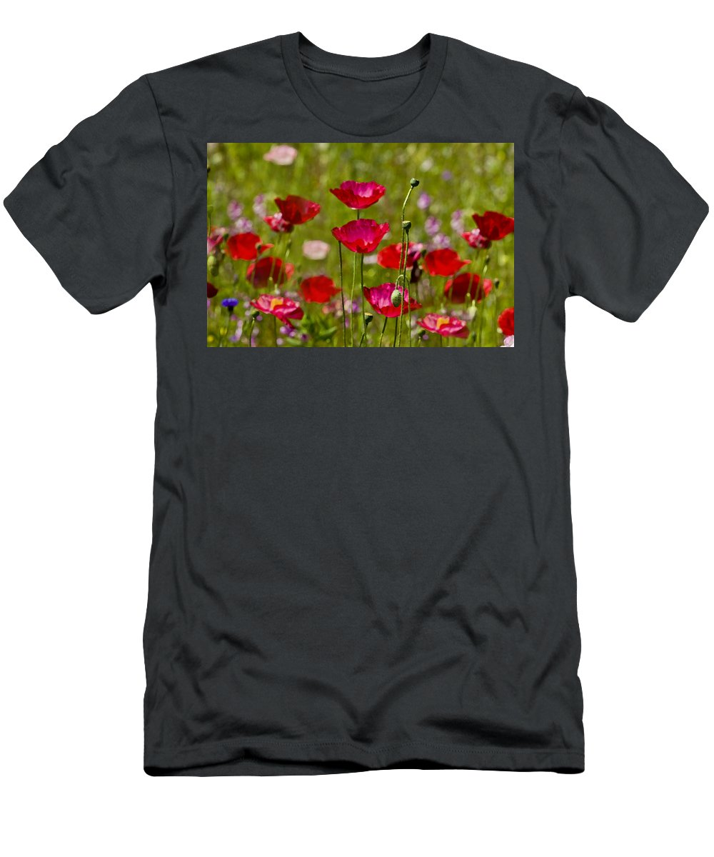 Poppies Men's T-Shirt (Athletic Fit) featuring the photograph Picture Perfect Poppies by Rich Franco