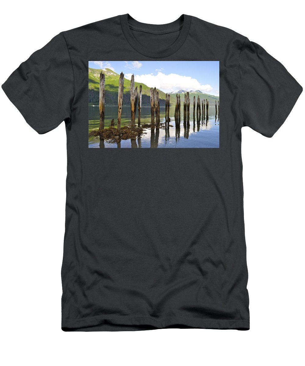 Landscape Men's T-Shirt (Athletic Fit) featuring the photograph Pilings by Cathy Mahnke