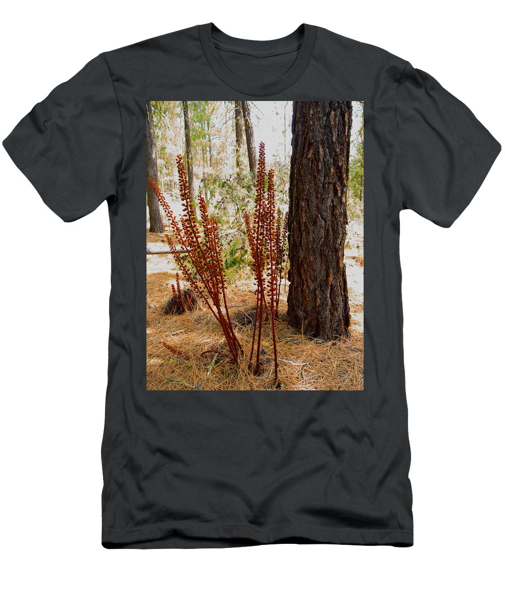 Pine Drops Men's T-Shirt (Athletic Fit) featuring the photograph Pine Drops And Ponderosa Pine In Des Chutes Nf-or by Ruth Hager
