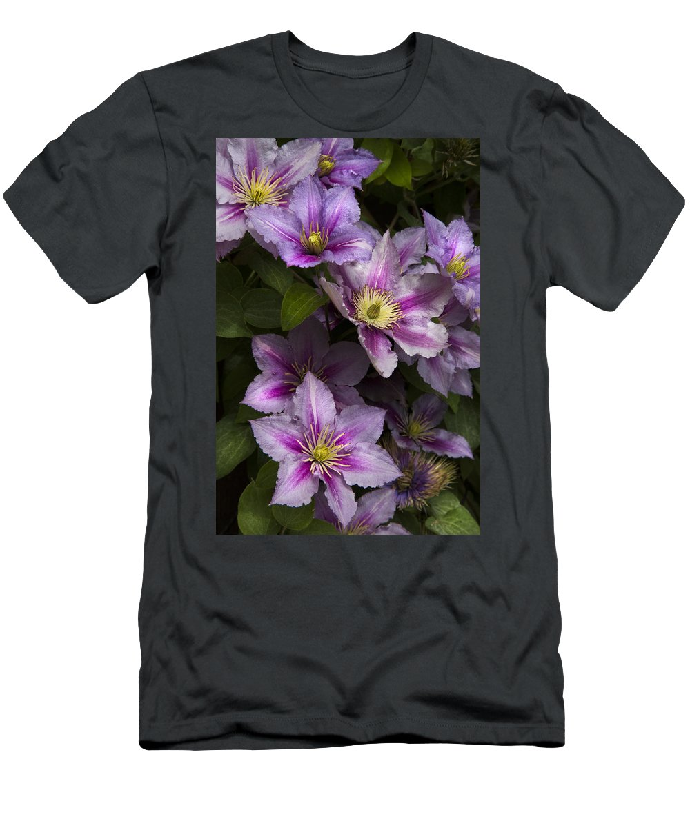Austria Men's T-Shirt (Athletic Fit) featuring the photograph Pink Clematis by Debra and Dave Vanderlaan