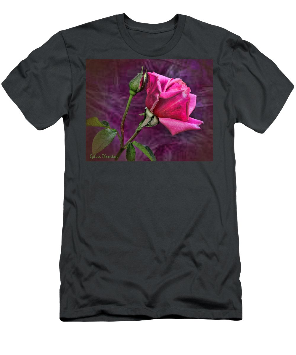 Pink Rose Men's T-Shirt (Athletic Fit) featuring the photograph Pink Velvet by Sylvia Thornton