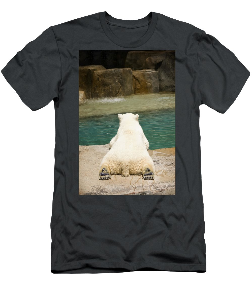 3scape Photos Men's T-Shirt (Athletic Fit) featuring the photograph Playful Polar Bear by Adam Romanowicz