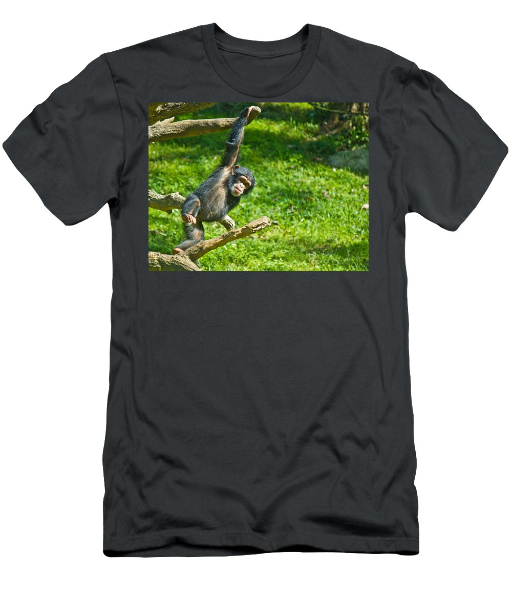 Animals And Earth Men's T-Shirt (Athletic Fit) featuring the photograph Playing Chimp by Jonny D