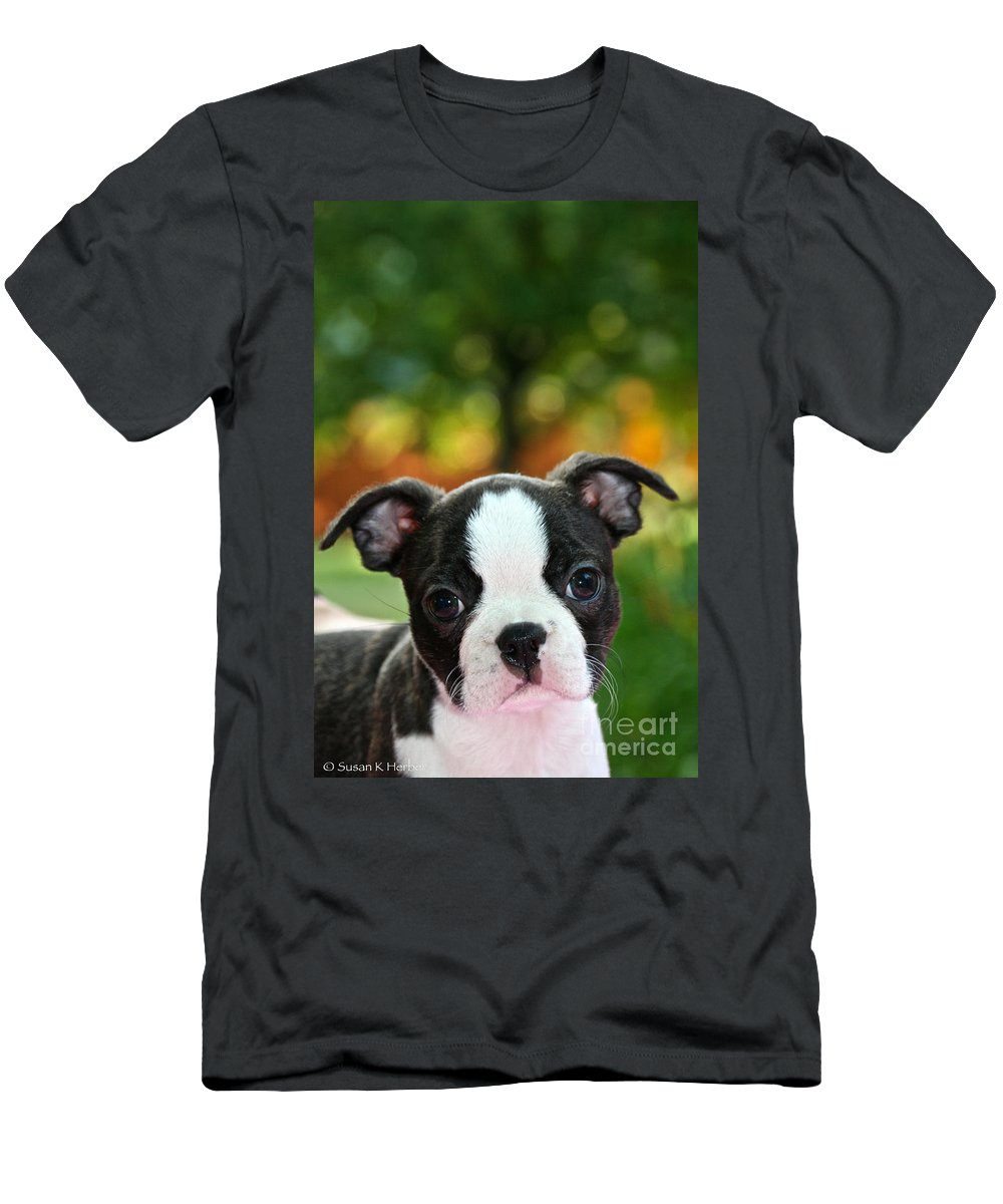 Animal Men's T-Shirt (Athletic Fit) featuring the photograph Please Love Me by Susan Herber