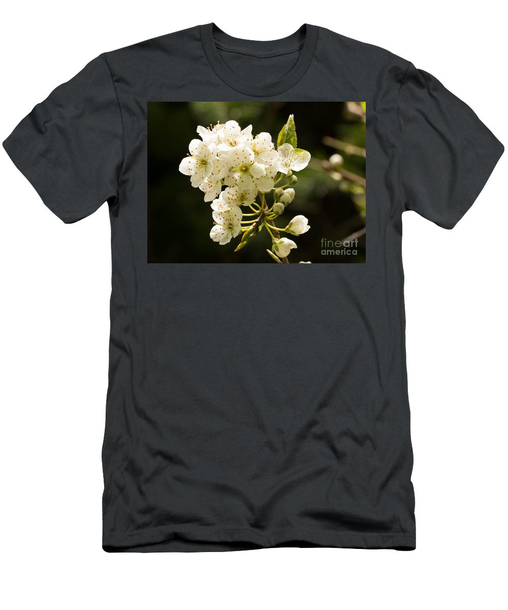 Blossom Men's T-Shirt (Athletic Fit) featuring the photograph Plum Blossom by Brigitte Mueller