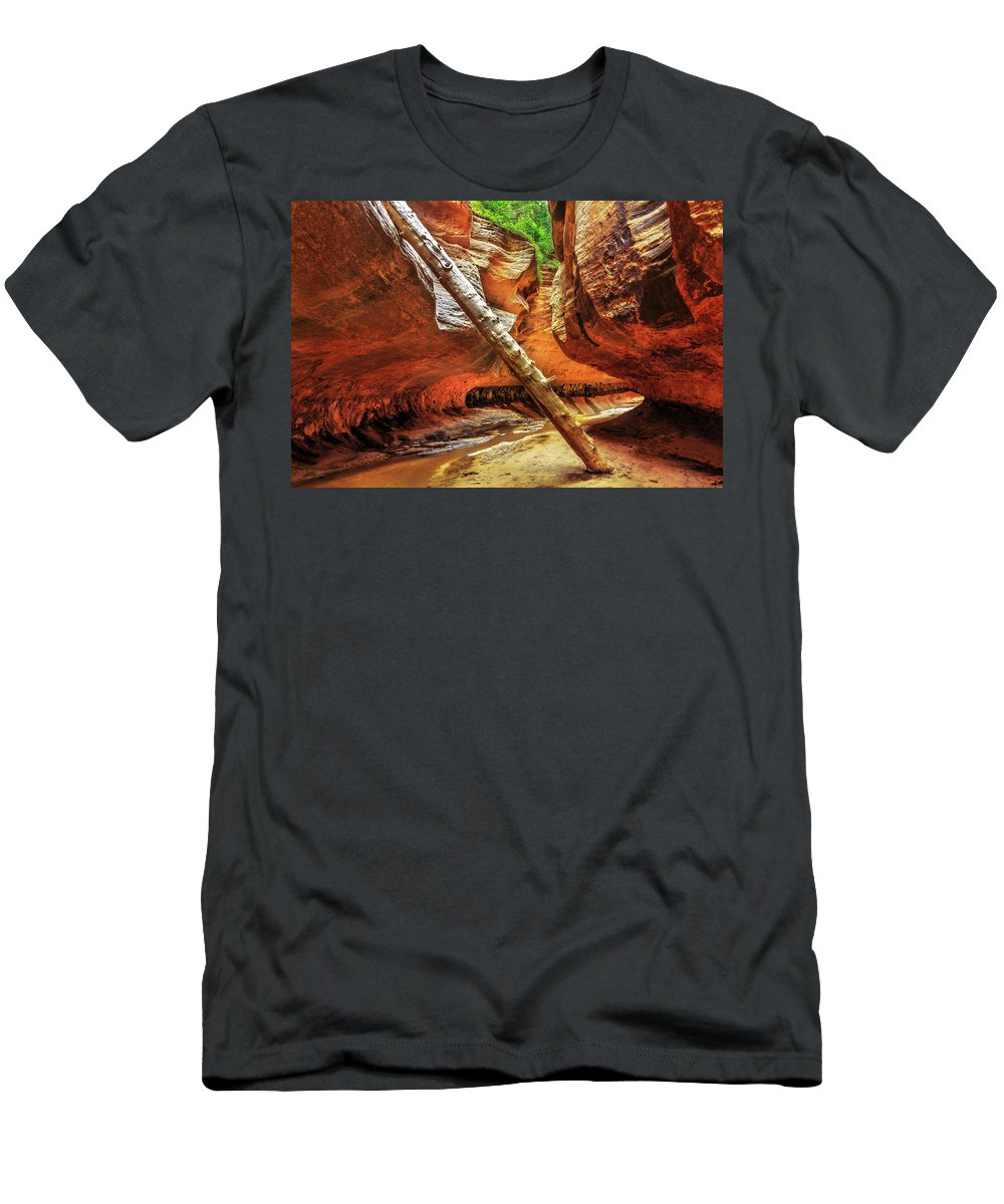 Zion National Park Men's T-Shirt (Athletic Fit) featuring the photograph Pointing The Way by Justin Lowery