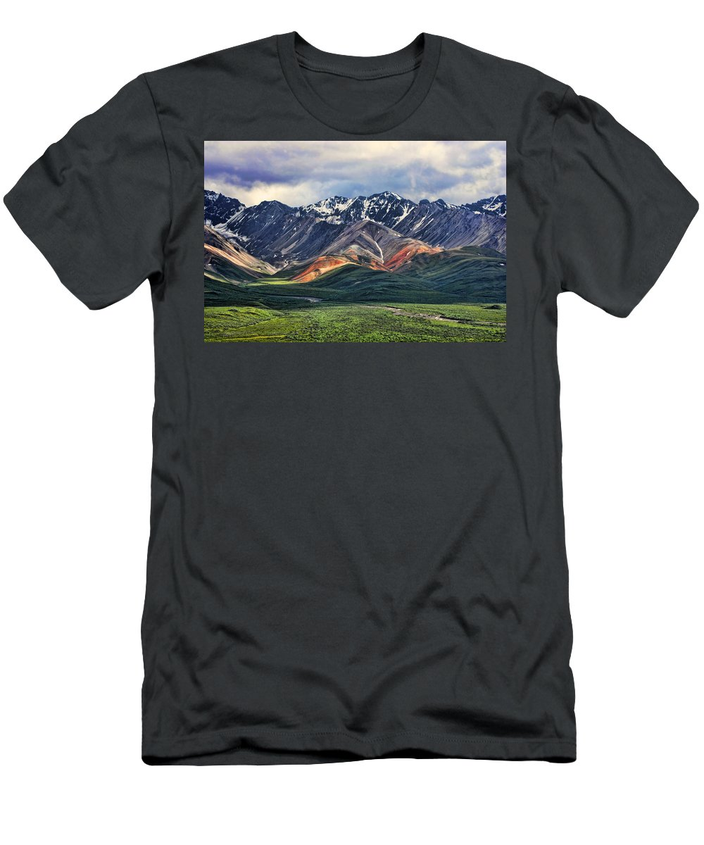 Polychrome T-Shirt featuring the photograph Polychrome by Heather Applegate