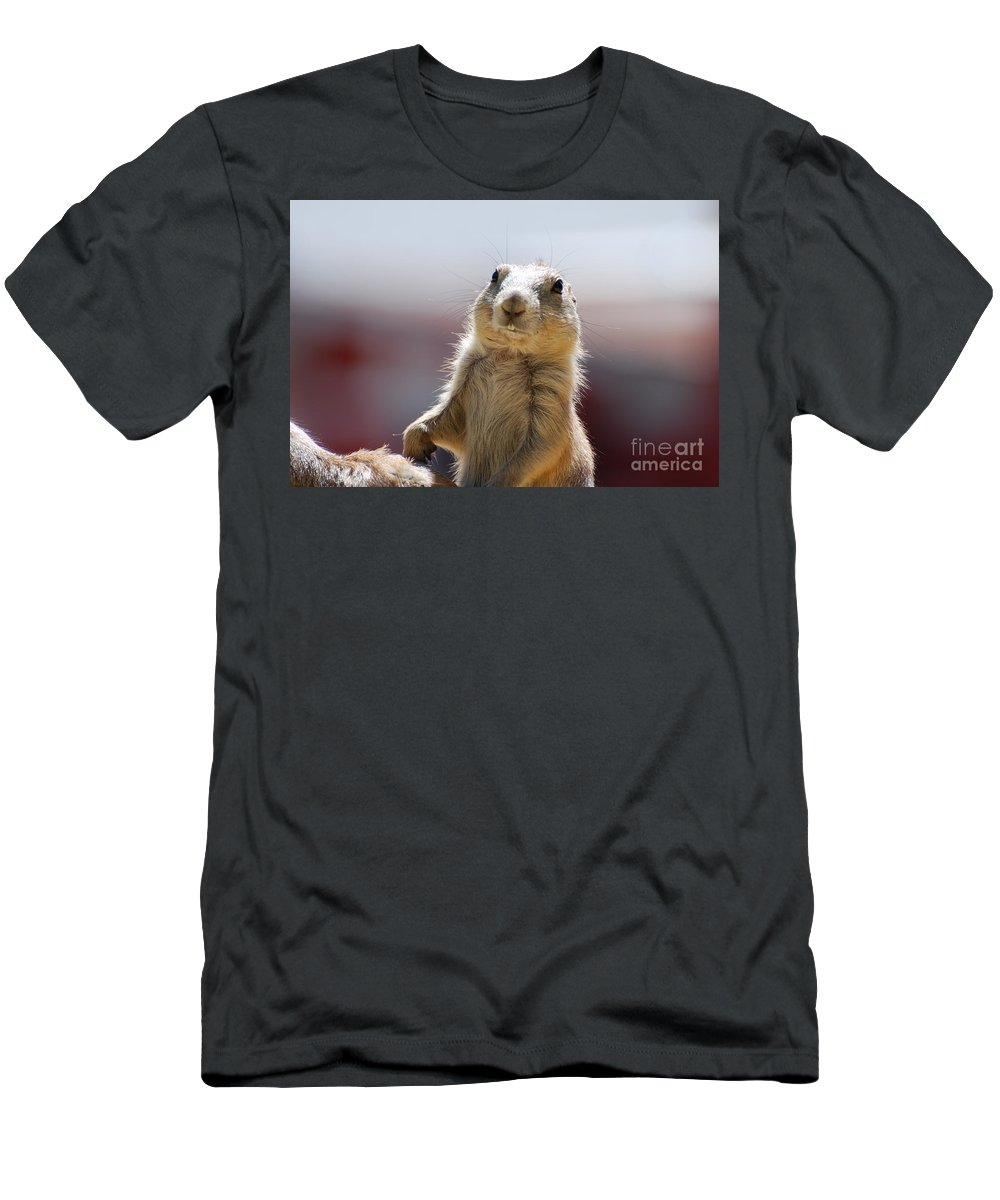 Prairie Dog Men's T-Shirt (Athletic Fit) featuring the photograph Prairie Dog With Buck Teeth by DejaVu Designs