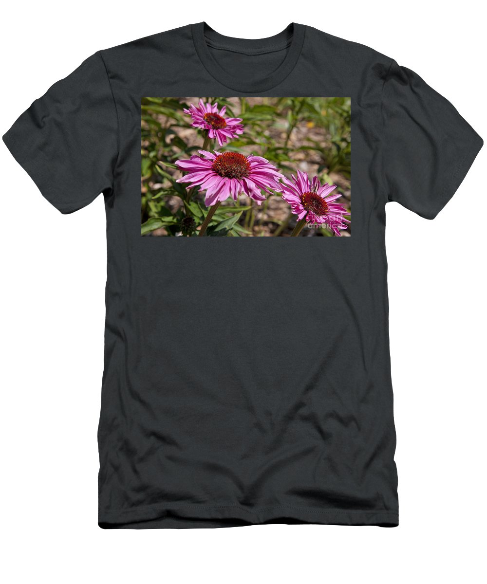 Primadonna Deep Rose Echinacea Men's T-Shirt (Athletic Fit) featuring the photograph Primadonna Deep Rose Echinacea by Jason O Watson