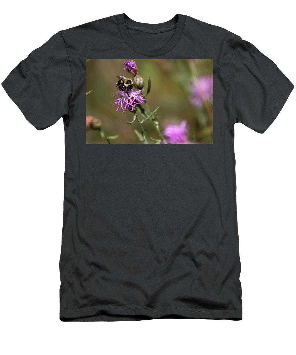 Bee Men's T-Shirt (Athletic Fit) featuring the photograph Productive Bee by Allan Lovell