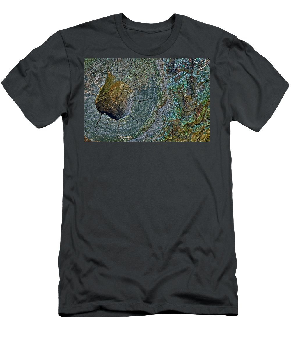Fort Monroe Men's T-Shirt (Athletic Fit) featuring the photograph Pruned Limb On Live Oak Tree by Jerry Gammon
