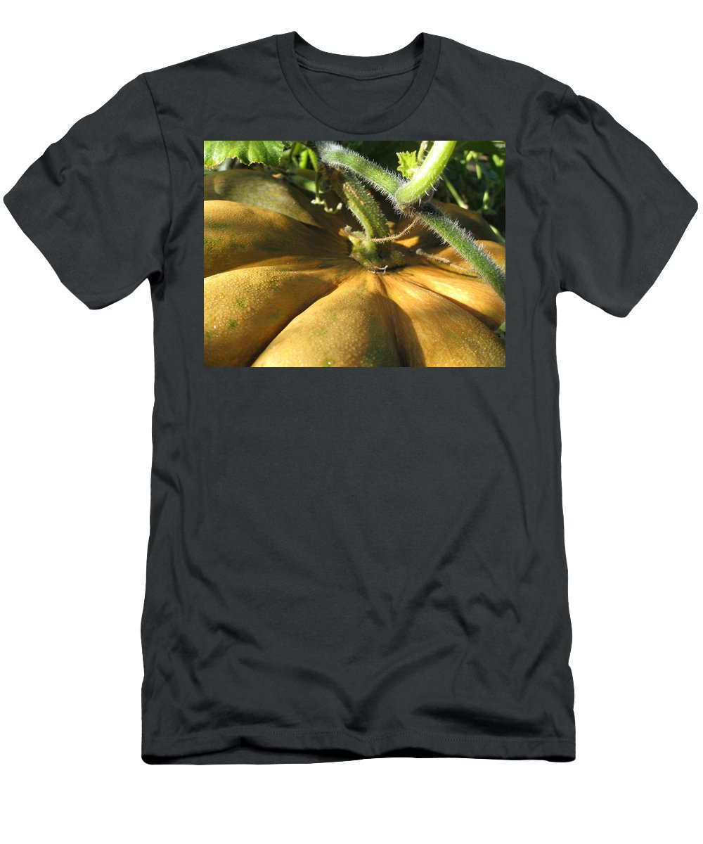 Close Up Men's T-Shirt (Athletic Fit) featuring the photograph Pumpkin Ripe by Noa Mohlabane