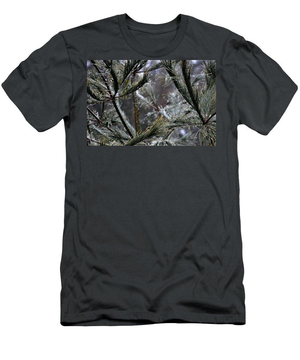 Rain Men's T-Shirt (Athletic Fit) featuring the photograph Rain On Pine Needles by Phyllis Meinke