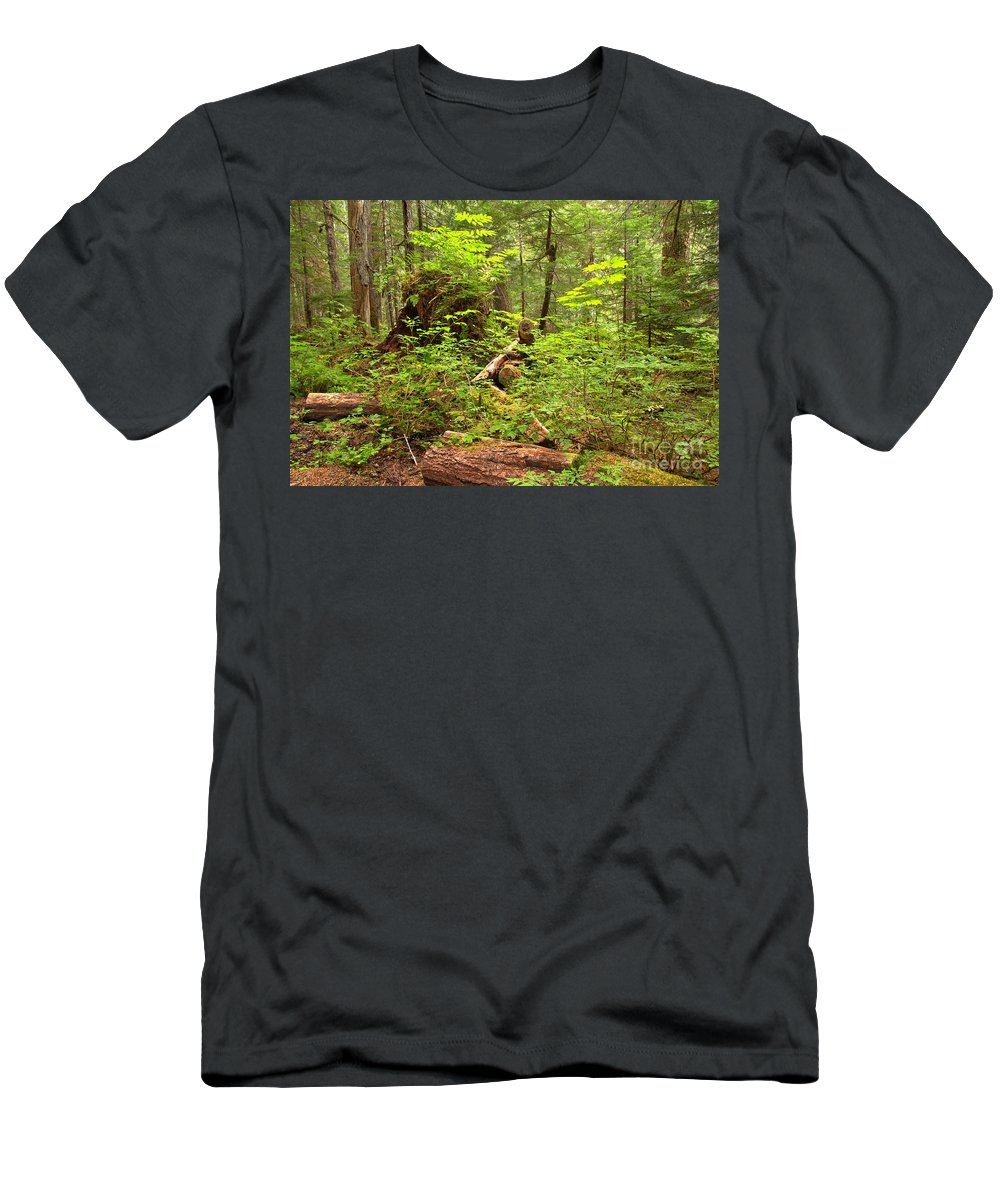Cheakamus Rainforest Men's T-Shirt (Athletic Fit) featuring the photograph Rainforest Green Everywhere by Adam Jewell