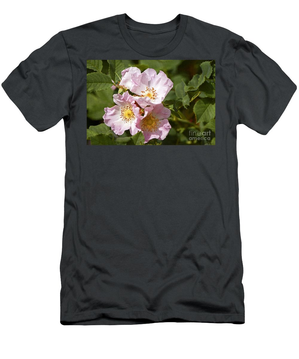 Rambling Rose Men's T-Shirt (Athletic Fit) featuring the photograph Rambling Rose 3 by Sharon Talson