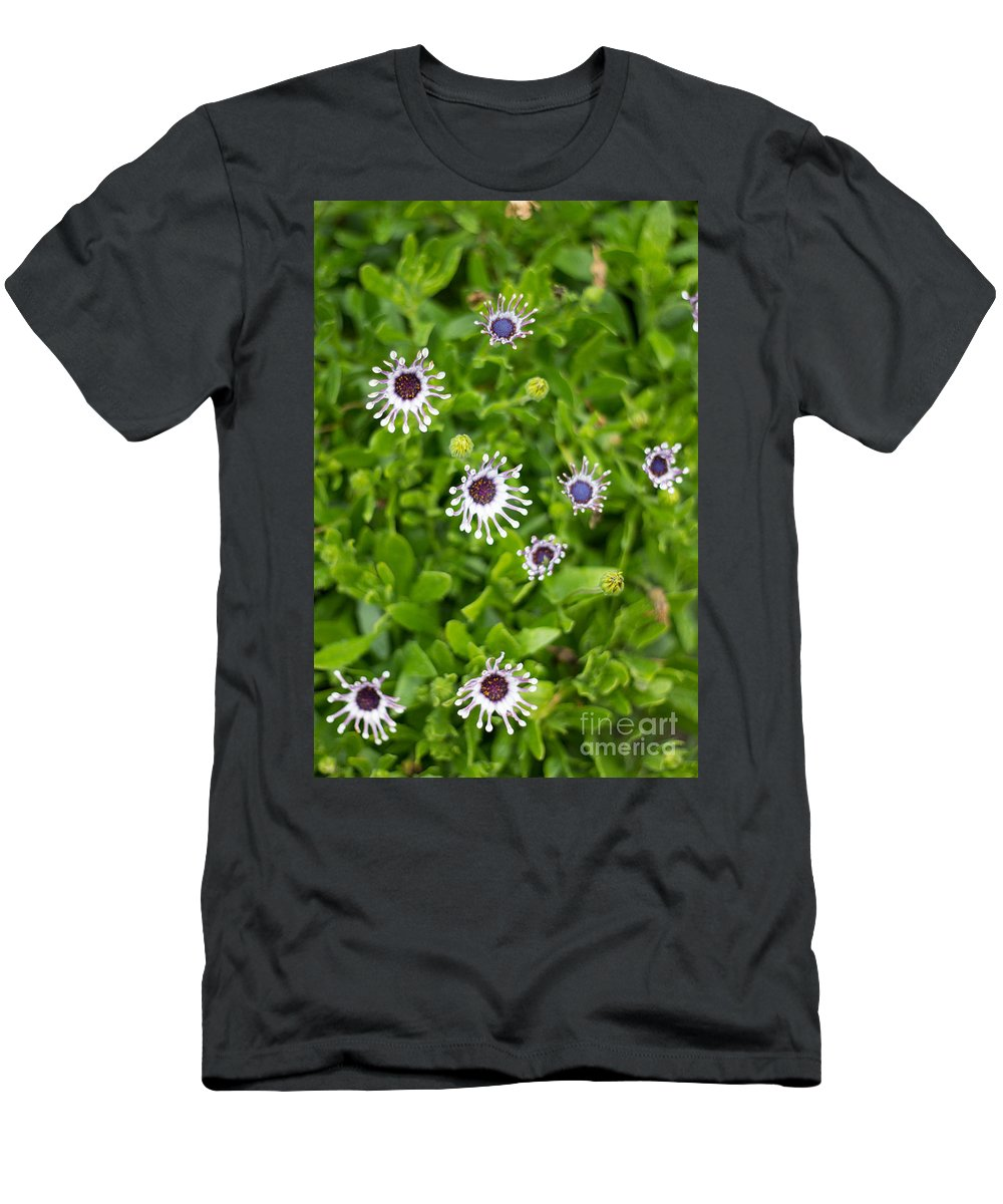 Flowers Men's T-Shirt (Athletic Fit) featuring the photograph Reaching For The Sun by Suzanne Luft