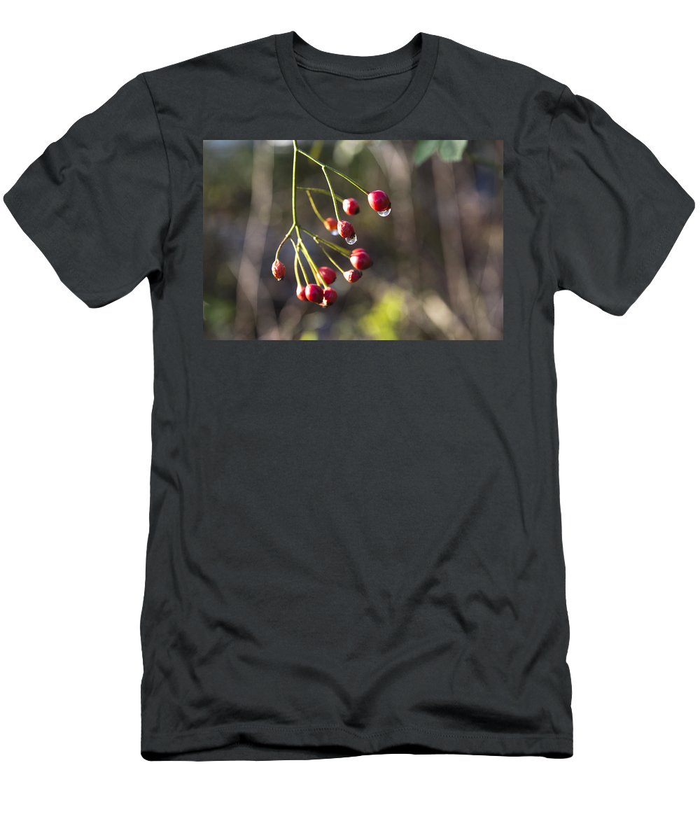 Red Men's T-Shirt (Athletic Fit) featuring the photograph Red Berries by Peter Lloyd