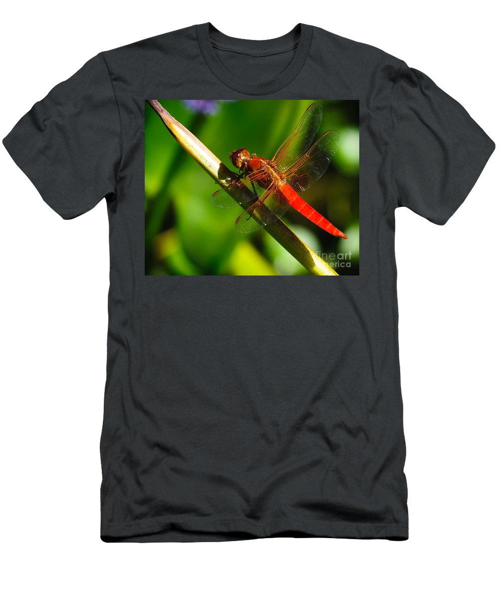 Bug Men's T-Shirt (Athletic Fit) featuring the photograph Red Dragonfly by Charles Dobbs